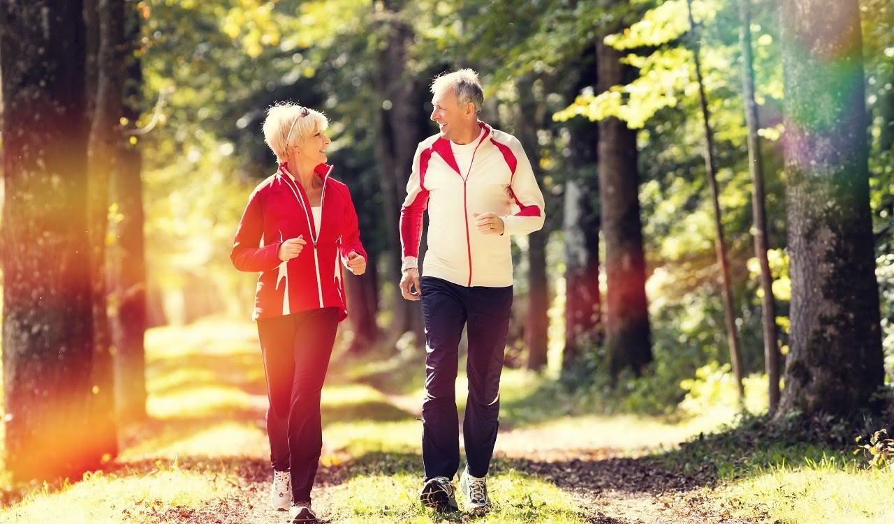 Zwei Senioren joggen im Wald und halten sich fit