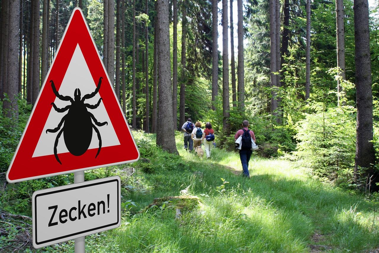 Schild mit Zeckenwarnung im Wald