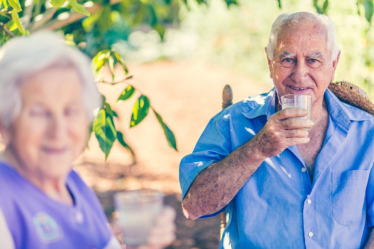 Seniorenpaar unter einem Baum im Sommer