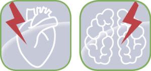 Logo Mittweidaer Forum – Herz & Hirn